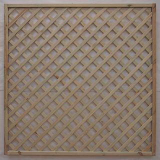 rectangular lattice trellis